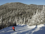 Boy Skis a Run Down from the Summit of Madonna Mountain  Smugglers's Notch  Vt