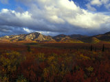 Denali Natioanl Park in Fall Colors