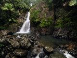 La Mina Waterfall Cascades over Rocks in the Rain Forest