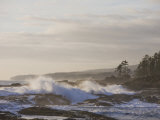 Stormy Day on Vancouver Island's West Coast