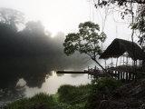 Morning Fog over a Peruvian Rain Forest River