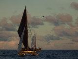 Hokule'A  a Double Hulled Canoe and a Polynesian Voyaging Canoe