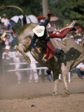 Rodeo Rider Being Bucked Off of a Bull