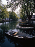Rowboats Docked in a Tree-Lined Canal in Annecy  France