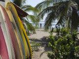 Surfboards and Beach Access at La Saladita Beach