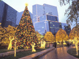 Christmas Lights Illuminate the James Center