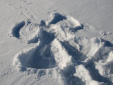 Snow Angel Is Left from Pay on a Winter Day