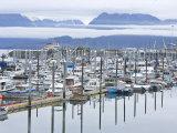 Marina at Homer Harbor in the Kenai Peninsula  Alaska