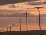Row of Telephone Poles at Sunset in Rural North Dakota