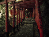 Stairway to a Mountain Temple in Beppu