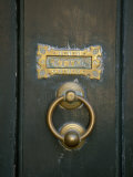 Close View of an Old Door Knocker and Mail Slot