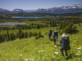 Four Men Hike into an Alpine Meadow on a Sunny Day