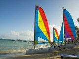 Catamarans with Colorful Sails on a Beach