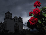 Red Roses and the Church of La Preciosa Sangre at Dusk
