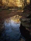 Footbridge over a Woodland Creek