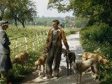 Woman Talks with a Man Walking Racing Greyhounds