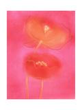 Stylized Poppies