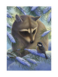 Raccoon and Chickadee in Snow Reproduction d'art