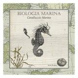 Biologia Marina III Reproduction d'art par Vision Studio