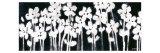 White Flowers on Black II