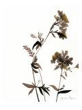 Watermark Wildflowers II