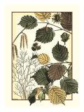Arts and Crafts Hazelnut Reproduction d'art par M.P. Verneuil