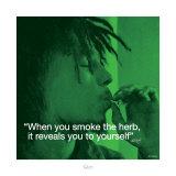 Bob Marley: Herb