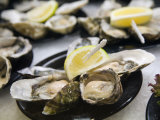 Plates of Fresh Oysters  Sydney's Fish Market at Pyrmont  Sydney  Australia