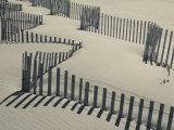 New York  Long Island  the Hamptons  Westhampton Beach  Beach Erosion Fence  USA
