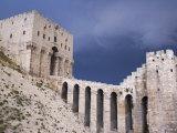 Citadel before a Storm  Aleppo