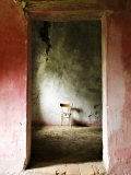 Chair in a Deserted Farm Near San Quirico D'Orcia  Valle De Orcia  Tuscany  Italy