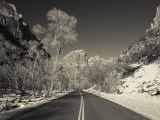 Utah  Zion National Park  Zion Canyon Scenic Drive  Winter  USA