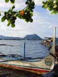 Colourful Banka Fishing Boats  Lake Taal  Taal Volcano in Back  Luzon  Talisay  Philippines
