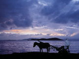 Dawn at Lake Ziway  Central Ethiopia  with the Silhouette of a Horse-Drawn Buggy