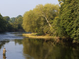 Trout Fisherman Casting to a Fish on the River Dee  Wrexham  Wales