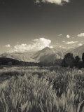 Mendoza Province  Uspallata  Andes Mountains and Rio Mendoza River  Argentina