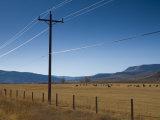 Colorado  Near Granby  Farmland  USA