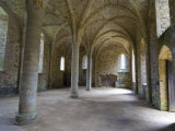 Crypt  Ruins of Battle Abbey  Battle  Sussex  England  United Kingdom  Europe