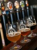 Beer Glasses at the Broggeriet Brewery in Sonderborg  Jutland  Denmark  Scandinavia  Europe