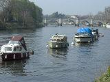 River Thames at Richmond  Surrey  England  United Kingdom  Europe