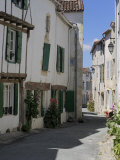 Street Lined with Hollyhocks  St Martin-De-Re  Ile De Re Charente-Maritime  France  Europe