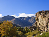 Andreas Canyon  Palm Springs  California  United States of America  North America