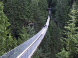 Tourists in Capilano Suspension Bridge and Park  Vancouver  British Columbia  Canada