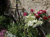 Bicycle Decorated with Flowers  Brantome  Dordogne  France  Europe
