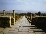 Northern Street Timgad (founded 100 AD by Trajan)  Algeria  North Africa
