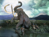 Mammoth Hunt  Lower Paleolithic era  Reconstruction