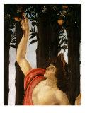 La Primavera (Spring ) Detail of Mercury Holding Wand to Orange Tree