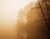 Fog on Shelly Lake I Reproduction d'art par Alan Hausenflock