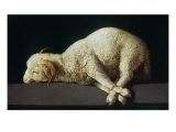 Agnus Dei (Lamb of God)