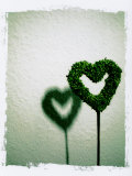 A Green Love Sign with its Shadow